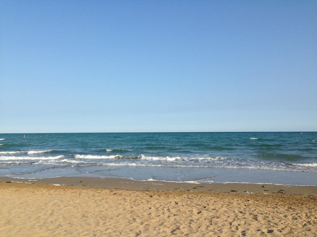 mare davanti la pineta