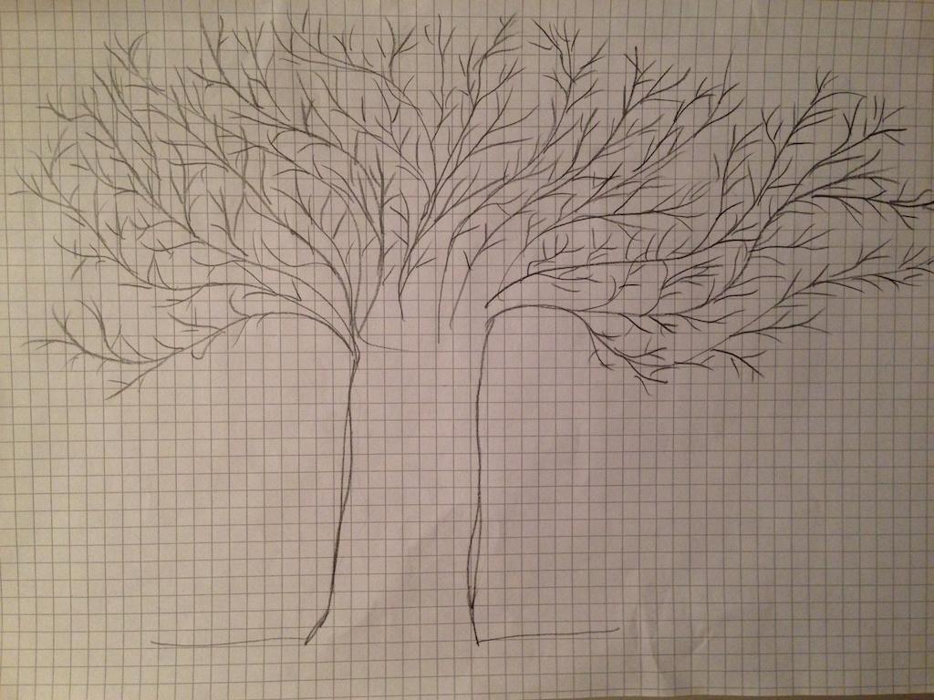L'albero di Maddalena