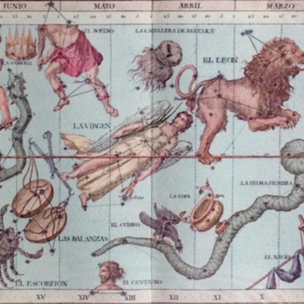 """""""I dodici segni zodiacali rappresentano simbolicamente dei modelli di energia: gli elementi Fuoco, Terra, Aria, Acqua a cui ognuno appartiene indicano modalità di espressione dell'essenza umana. I segni zodiacali sono una rappresentazione del tempo solare, delle stagioni e dei cicli della natura. Zodiaco deriva da zoo-diacos che significa ruota della vita. Ogni mese coincide così con un segno zodiacale al quale sono stati attribuiti significati psicologici in armonia con il ciclo naturale che si svolge in quel periodo. Le stagioni hanno una fase iniziale, una di espansione e una conclusiva. I segni zodiacali cardinali sono: Ariete, Cancro, Bilancia, Capricorno. Essi corrispondono all'inizio delle quattro stagioni: Ariete e Bilancia iniziano con i due equinozi di primavera e d'autunno, rispettivamente il 21 marzo e il 23 settembre; Cancro e Capricorno con i due solstizi d'estate e d'inverno, rispettivamente il 22 giugno e il 22 dicembre. Le persone con un'enfasi nei segni zodiacali cardinali sono, in un certo senso, """"i pionieri"""" dello zodiaco poiché aprono nuove strade, iniziano, intraprendono, ma spesso mancano di costanza. I segni zodiacali fissi sono: Toro, Leone, Scorpione, Acquario. Essi corrispondono al periodo culminante delle stagioni. Nel Toro (21 aprile-20 maggio) è in pieno svolgimento la primavera, nel Leone (23 luglio-23 agosto) l'estate, nello Scorpione (23 ottobre -22 novembre) l'autunno, nell'Acquario (21 gennaio-19 febbraio) l'inverno. Le persone con un'enfasi nei segni zodiacali fissi tendono a preservare uno """"status quo"""", perseguono i propri obiettivi con tenacia e temono i cambiamenti. I segni zodiacali mobili sono: i Gemelli, Vergine, Sagittario, Pesci che corrisponde alla fine delle stagioni: Gemelli (21 maggio-21 giugno) alla fine della primavera, Vergine ( 24 agosto-22 settembre) alla fine dell'estate, Sagittario (23 novembre-21 dicembre) alla fine dell'autunno, Pesci (20 febbraio- 20 marzo) alla fine dell'inverno. Le persone con enfasi nei se"""